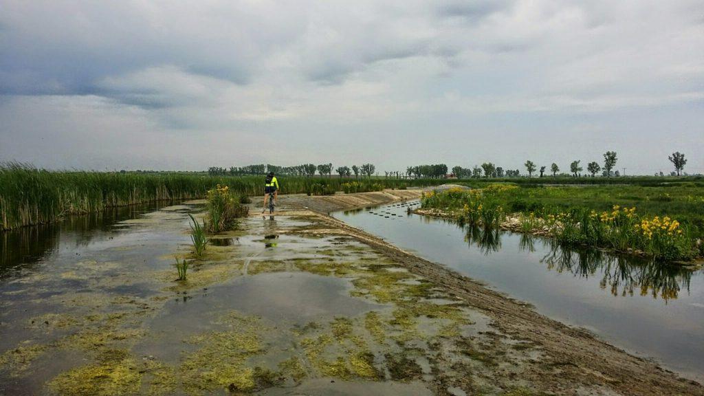 Plimbare pe canale, cand apa e scazuta