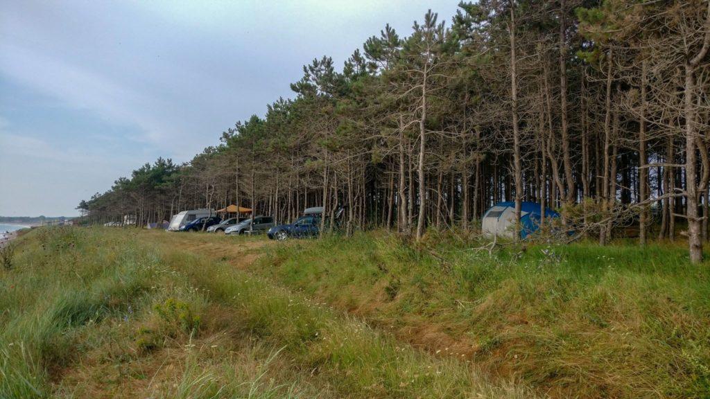 Masinile si corturile din padurea de pini