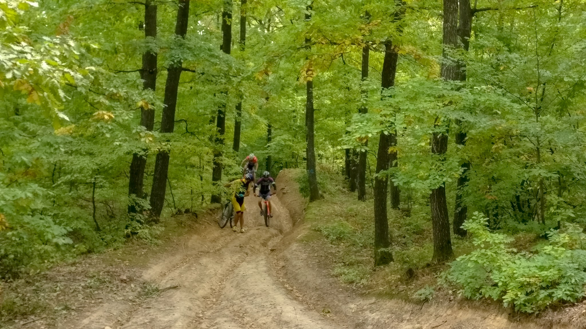 Push bike pe potecile abrupte din padure
