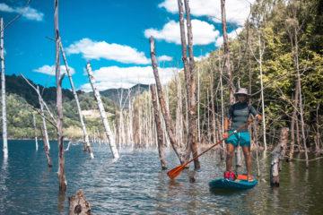 Cu SUP Prin padurea lacustra de pe lacul Siriu