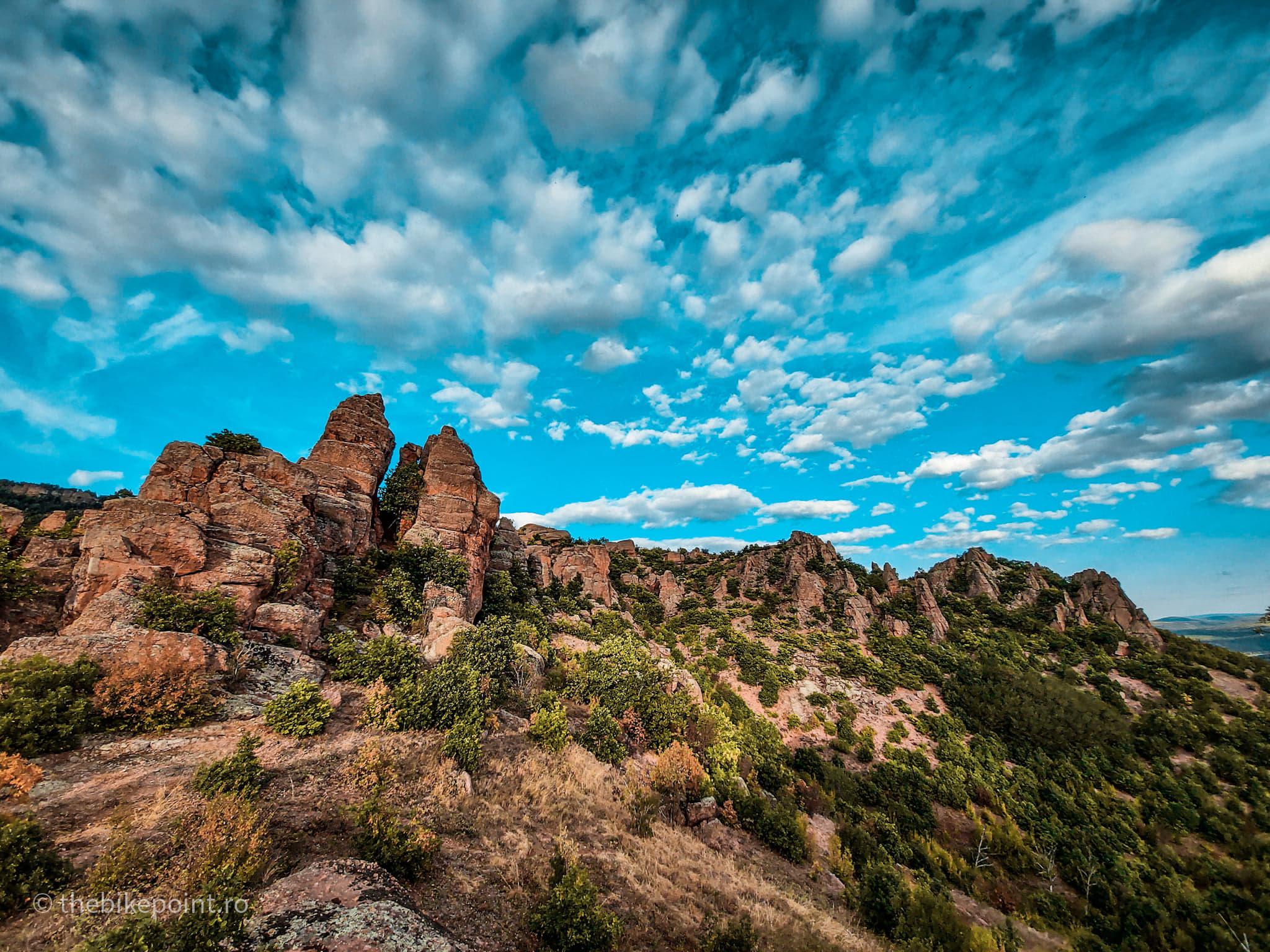 Borovitsa Pine Stone