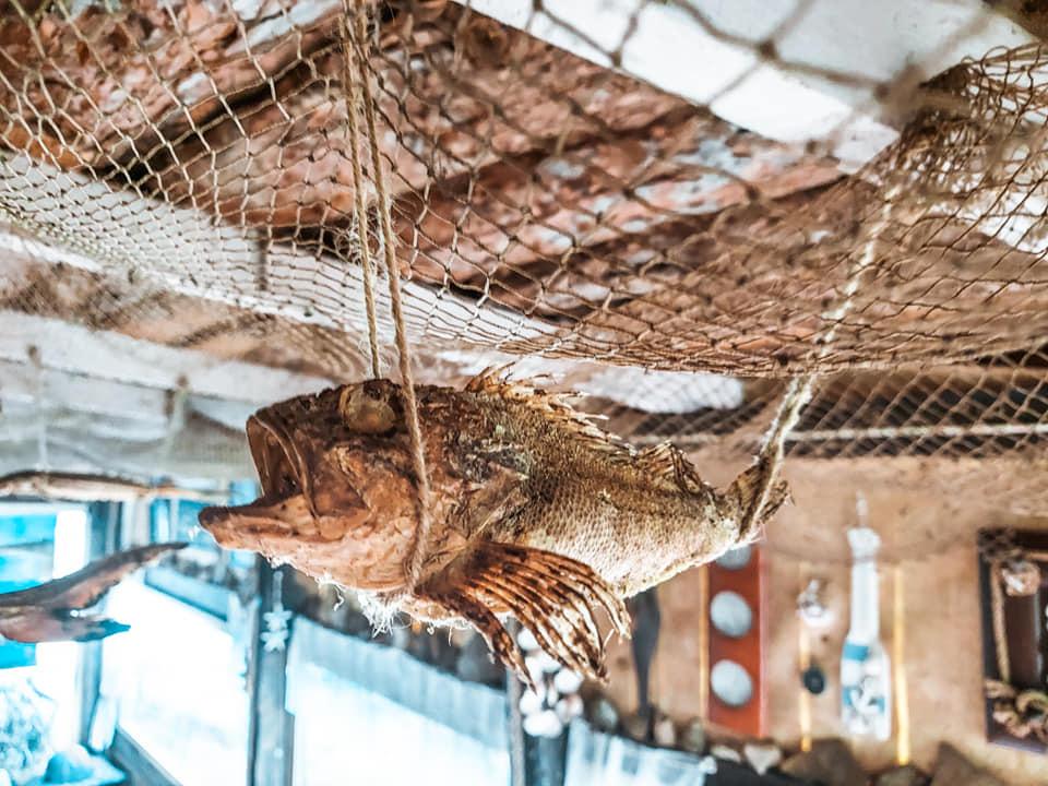 Guvizi și draci de mare