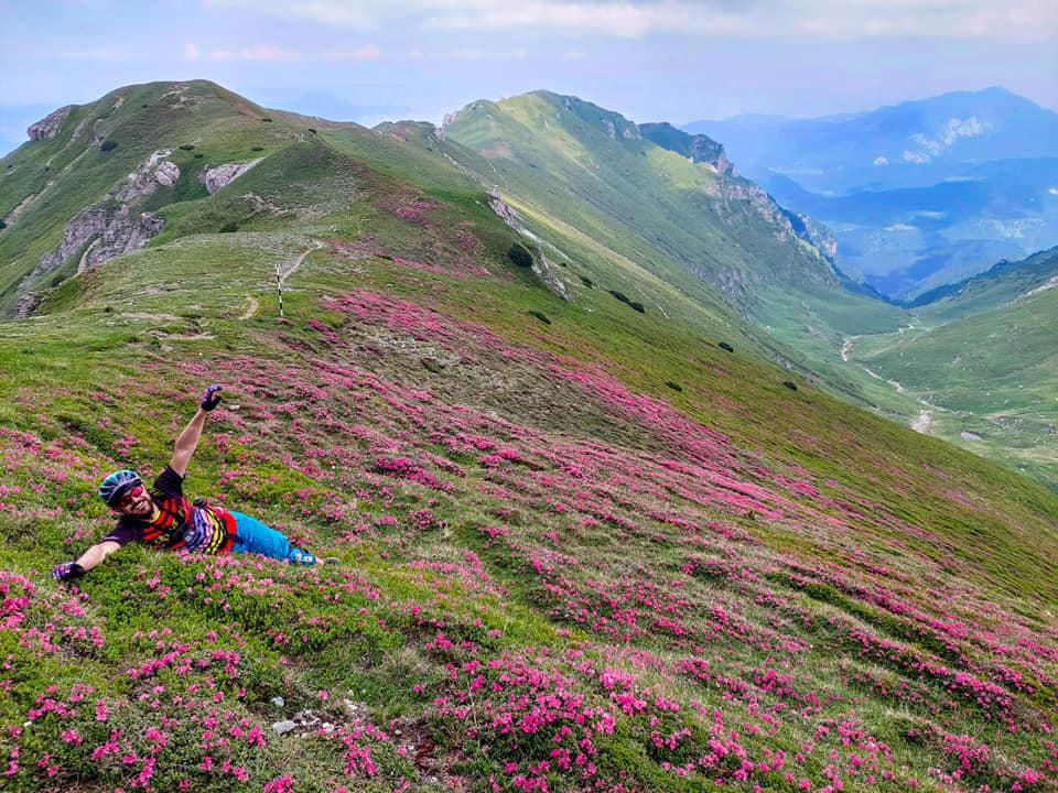 Bucuria florilor pe turele de MTB din Bucegi